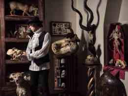 Collezione Del Bufalo - La Wunderkammer